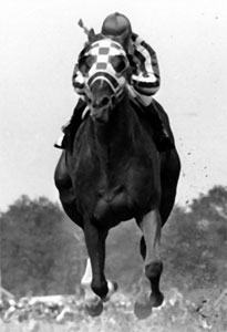 Secretariat breaks the record